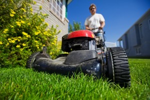 657581-mow-the-lawn (1)